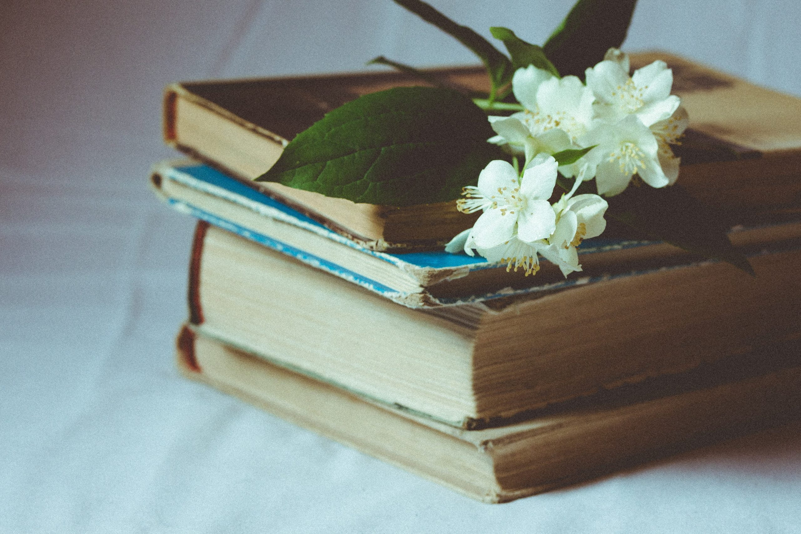 books and blooms