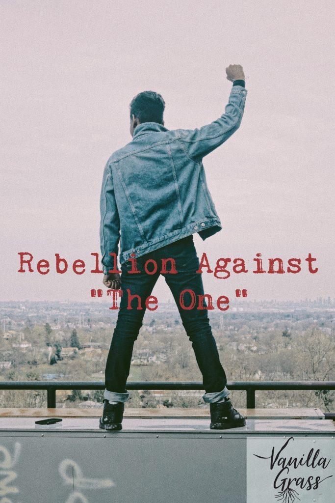 "Rebellion Against ""The One"" is Booker's 9th basic story plot."